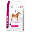 Eukanuba Sensitive digestion 12,5 kg
