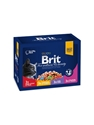 Brit Premium Pouches Chunks 12*100g
